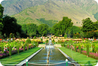 City Day Tour of Mughal Garden